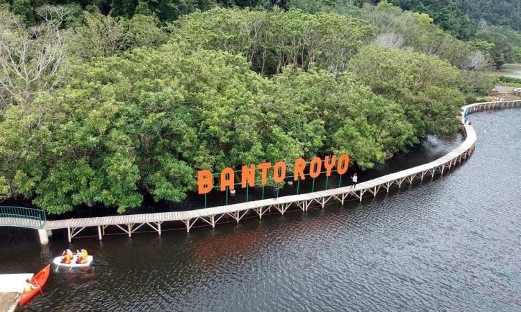 Banto Royo
