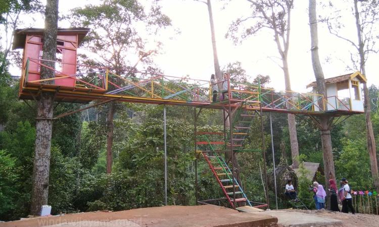 Batam Forest Top