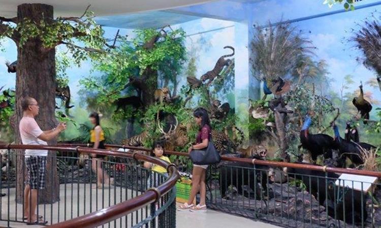 Rahmat Internasional Wildlife Museum & Gallery