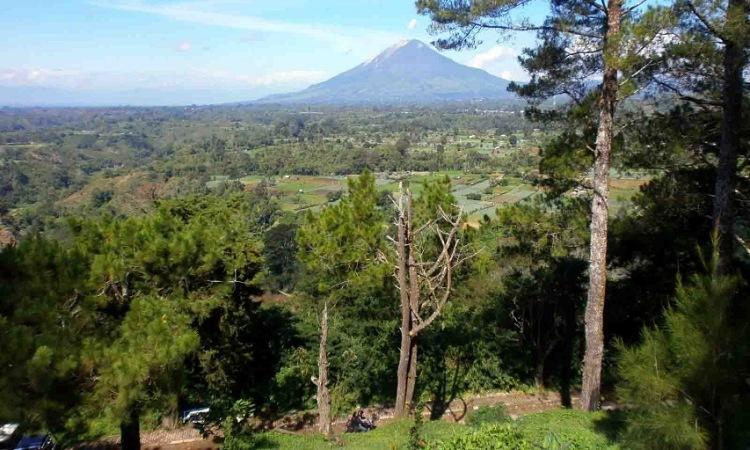 Bukit Gundaling