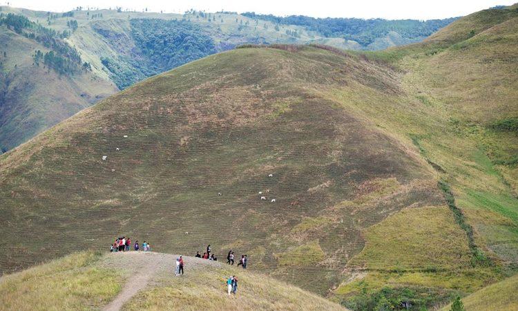 Bukit Holbung