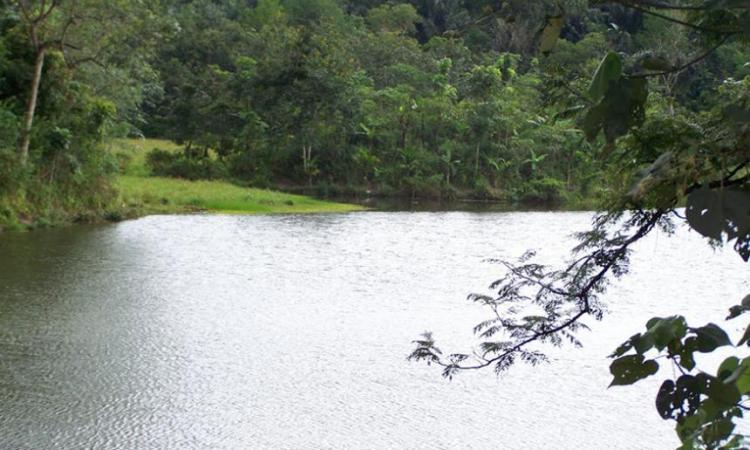 Danau Telogo Rejo Sendang Baru