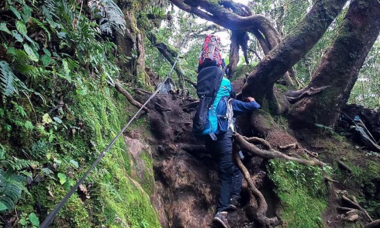 Jalur Pendakian Gunung Dempo