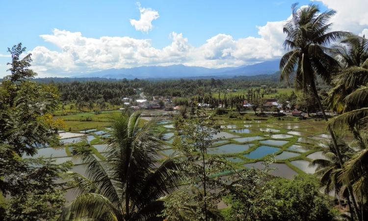 Panorama Puncak Kiambang