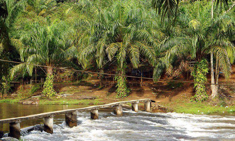 8 Tempat Wisata di Labuhanbatu Selatan Terbaru & Terhits ...