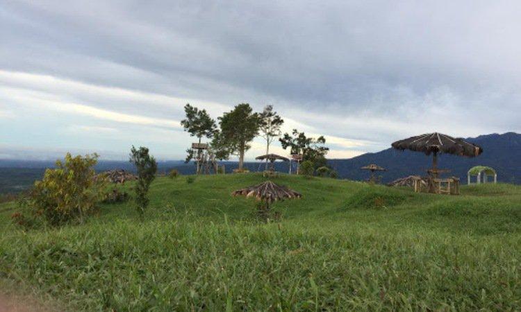 The Yo's Hill