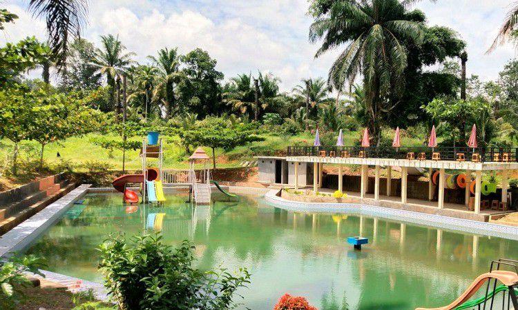 Vivetato Water & Farm