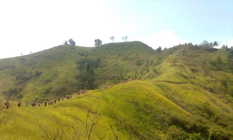 Bukit Aua Sarumpun