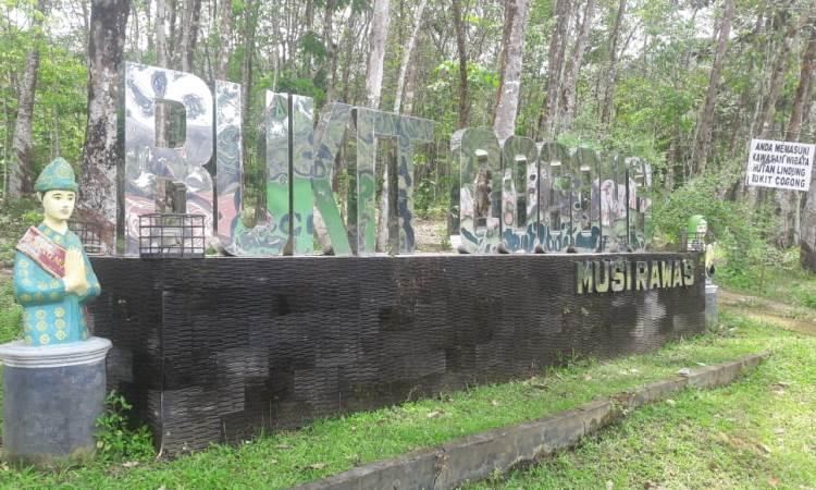 Bukit Cogong