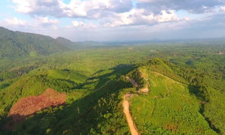Bukit Tambun