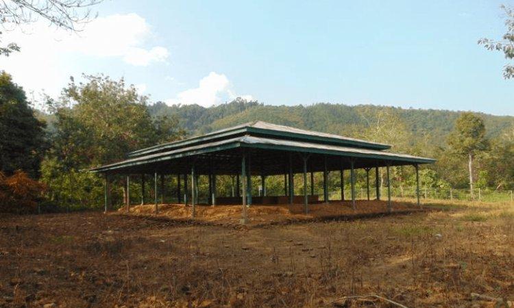 Candi Pulau Sawah