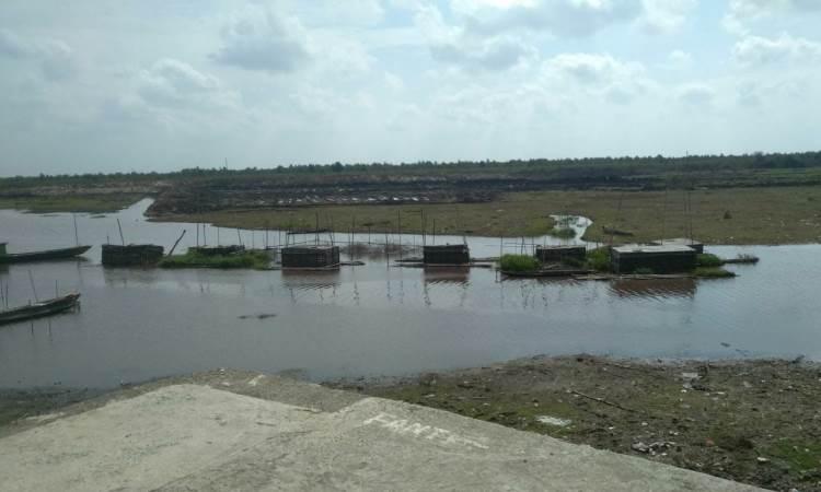 Danau Tanjung Kurung