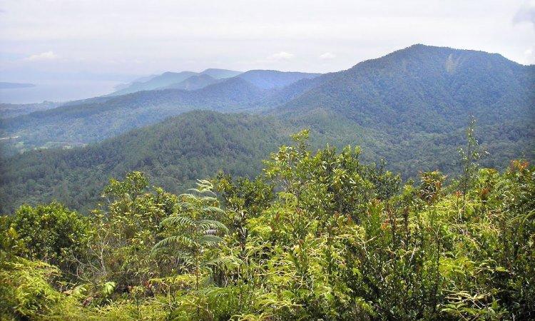 Gunung Pangulubao