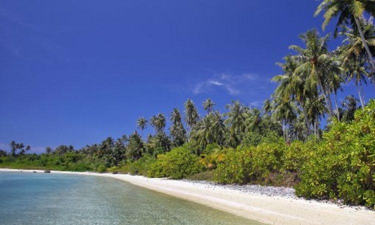 Pulau Wunga Laguna