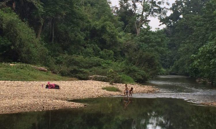 Sungai Rokan Kiri