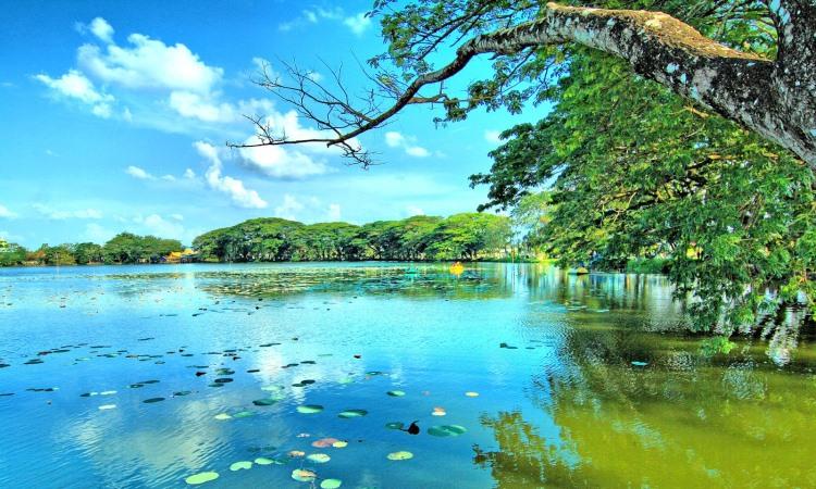 Wisata Alam Danau Raja