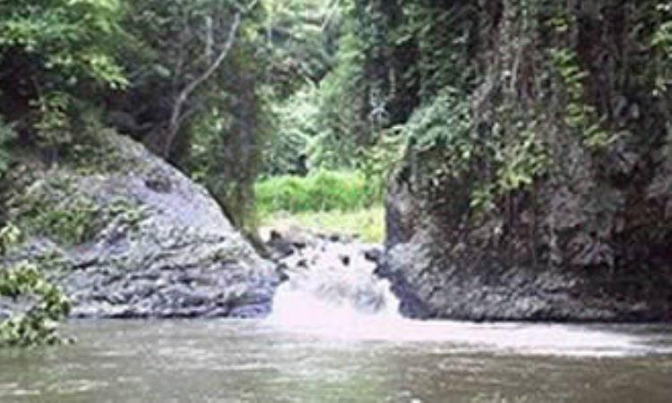 Air Panas Desa Tempel Rejo