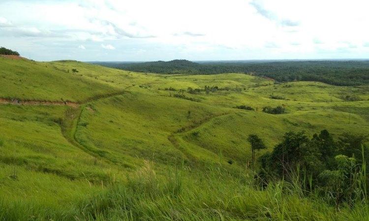 Bukit Ilalang