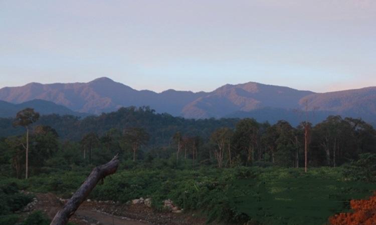 Bukit Raje Mandare