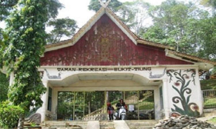 Bukit Tiung