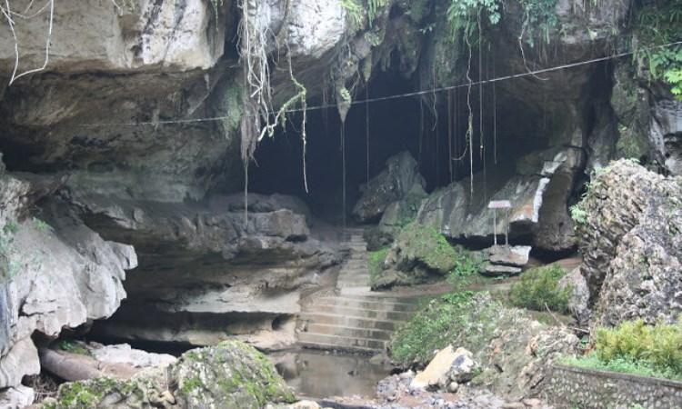 Gua Bukit Makmur