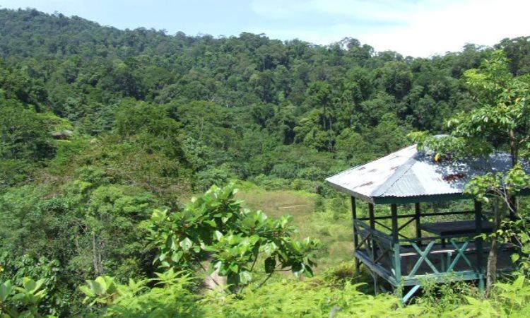 Taman Nasional Bukit 30