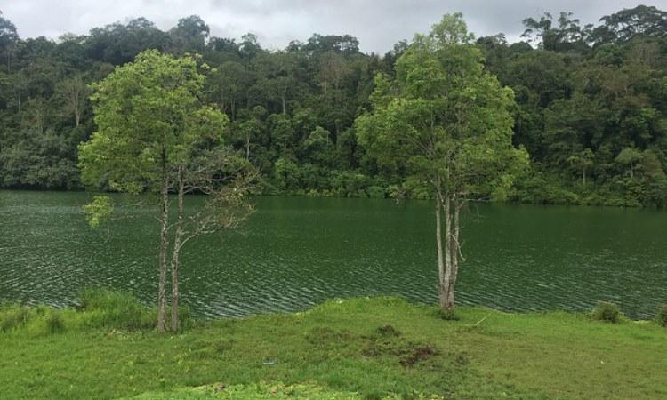 Taman Nasional Bukit Duabelas