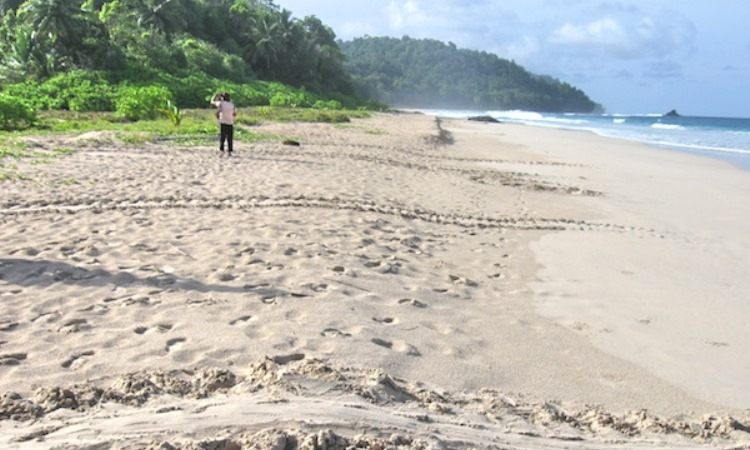 Pantai Amandangan