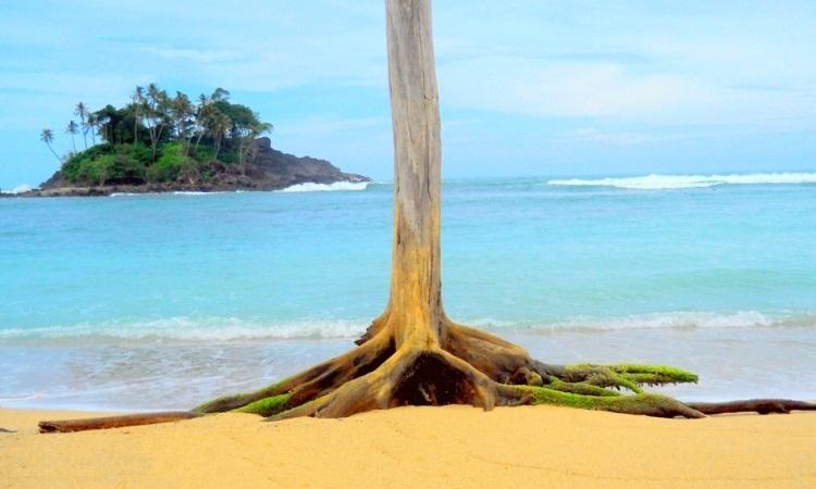 Wisata Pantai Di Aceh Timur Visitbandaaceh Com