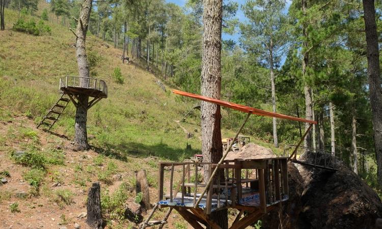Rumah Pohon Genting