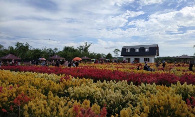 Taman Bunga Aceh