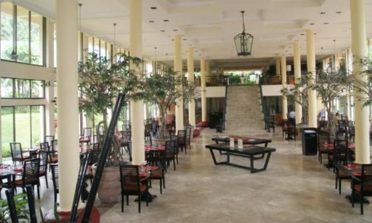 Lotus Café