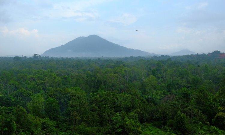 Gunung Bintan, Kepulauan Riau