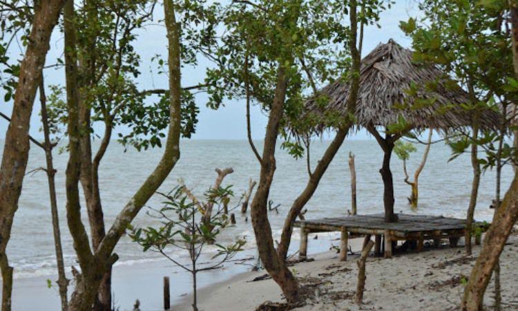 Alamat Wisata Pantai Mangrove