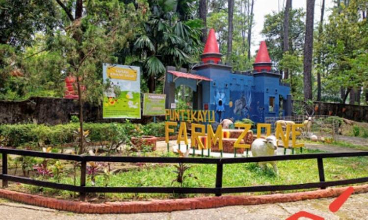 Alamat Taman Punti Kayu
