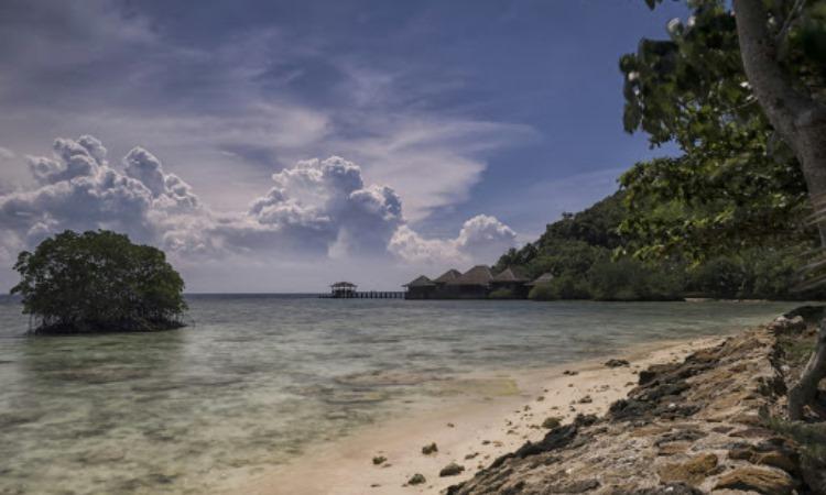 Daya Tarik Pulau Pahawang