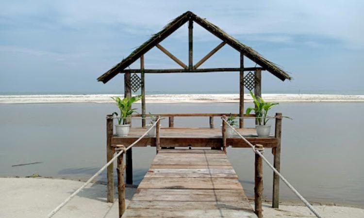 Daya Tarik yang Dimiliki Pantai Mangrove