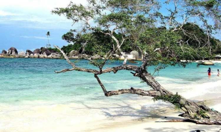 Daya Tarik yang Dimiliki Pantai Pasir Putih Lampung