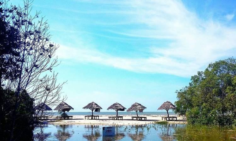 Harga Tiket Pantai Mangrove Kampung Nipah