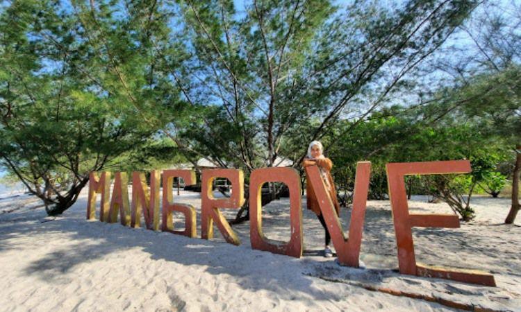 Kegiatan di Pantai Mangrove