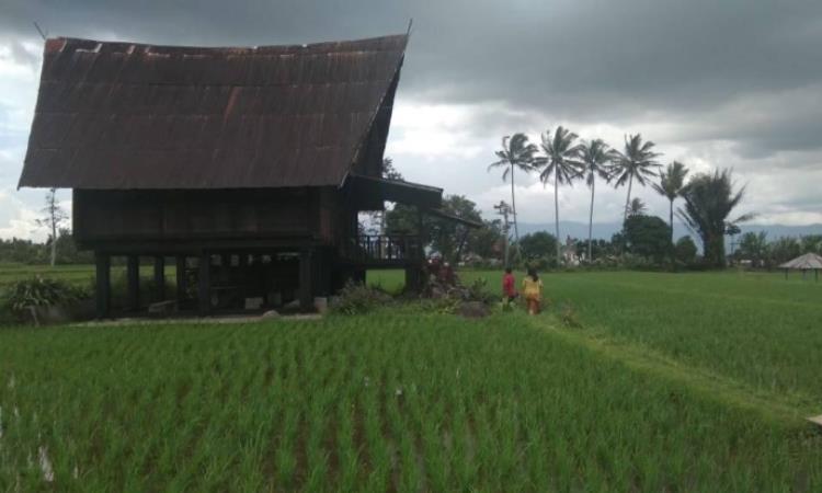 Rumah Adat Tatahan