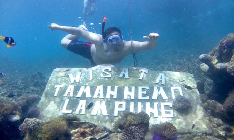 Taman Bawah Laut Nemo