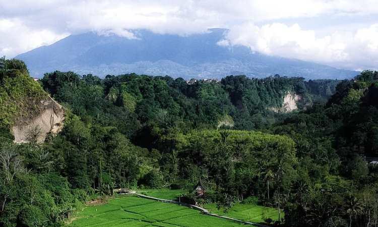 Indahnya Ngarai Sianok Pahatan Sang Pencipta Yang Menakjubkan Di Sumatera Barat Andalas Tourism