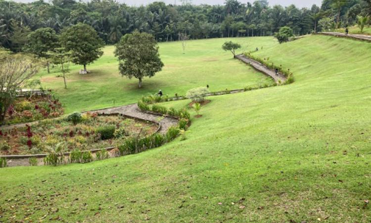 Alamat T Garden