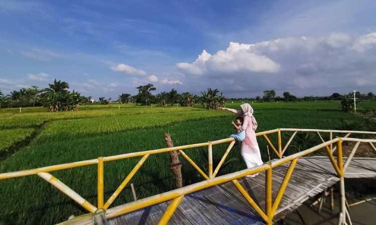 Kegiatan Menarik di Kampung Wisata Sawah