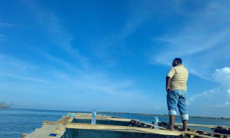 Kegiatan di Pulau Sembilan
