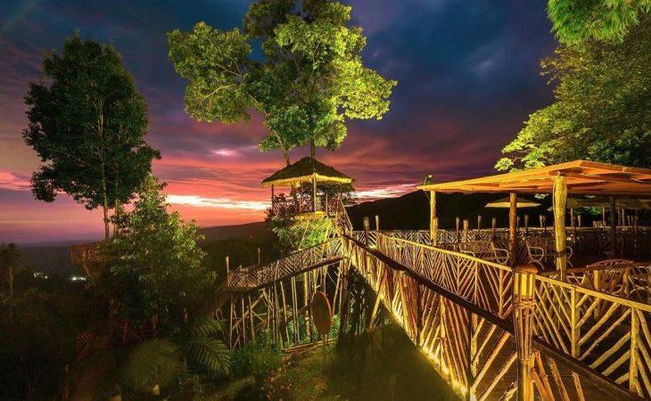 Rumah Pohon Habitat, Panorama Alam Langkat yang Menakjubkan