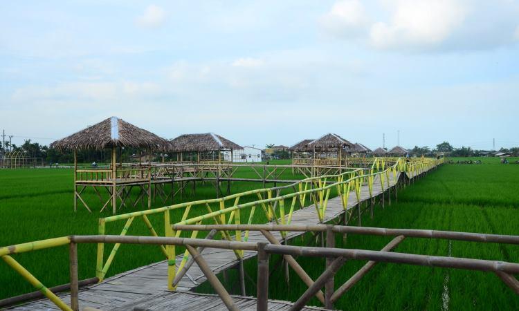 Kampung Wisata Sawah Pematang Johar, Destinasi Wajib Penikmati Kuliner & Wisata Selfie