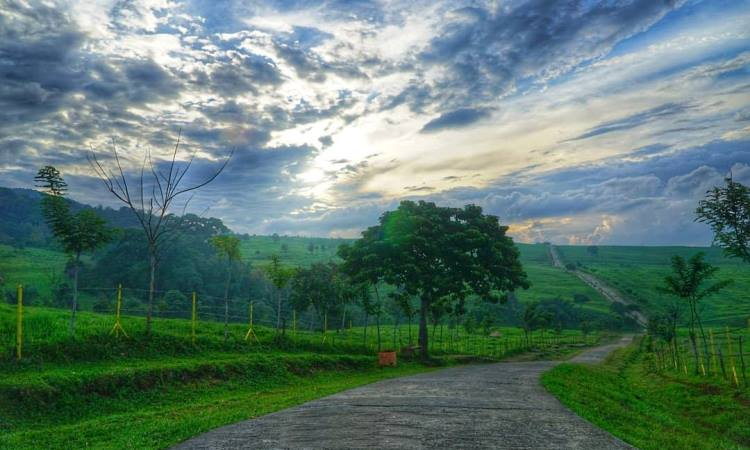 Alamat Padang Mangateh