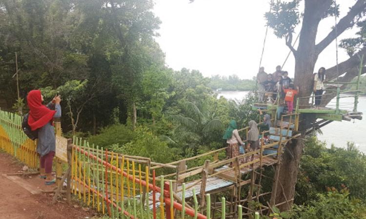 Kegiatan Menarik di Taman Wisata Habibie